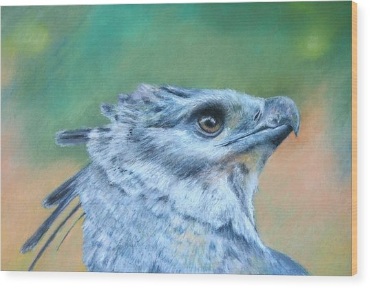 Harpy Eagle Two Wood Print