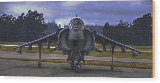 Harrier Wood Print by Paul Owen