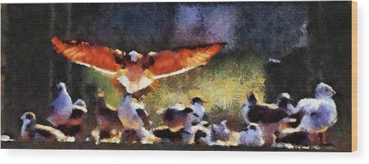 Harris Creek Gulls Wood Print
