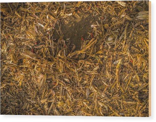 Harvest Leftovers Wood Print
