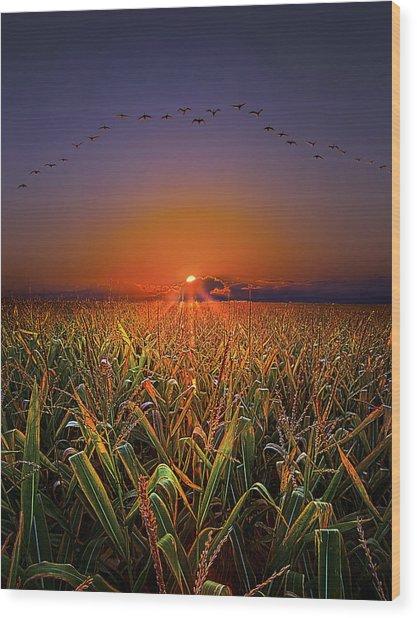 Harvest Migration Wood Print