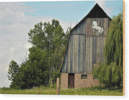 0017 - Hassler Lake Road Horse Barn Wood Print
