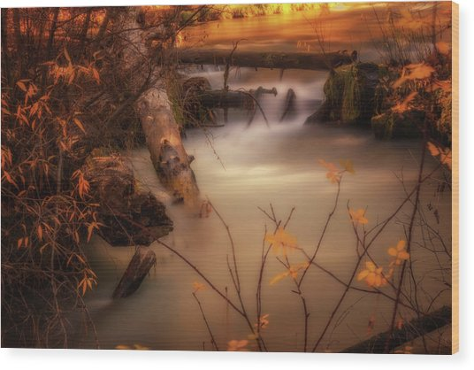 Hat Creek In Gold Wood Print