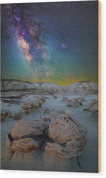 Hatched By The Stars Wood Print