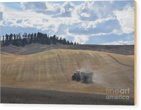 Hauling The Harvest From The Fields. Wood Print