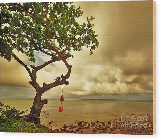 Hawaii Beach Tree Wood Print