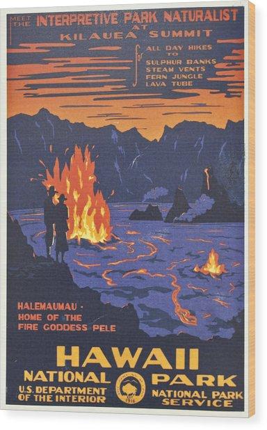 Hawaii Vintage Travel Poster Wood Print