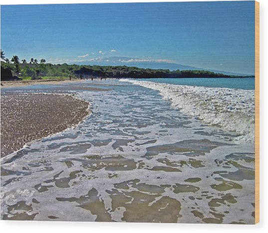 Hawaiian Landscape Of Hapuna Beach Wood Print