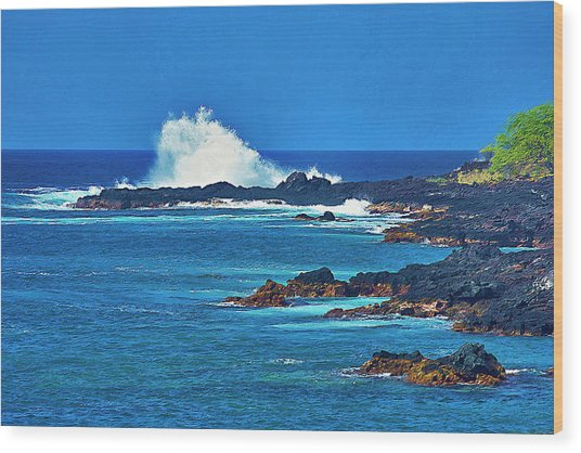 Hawaiian Seascape Wood Print