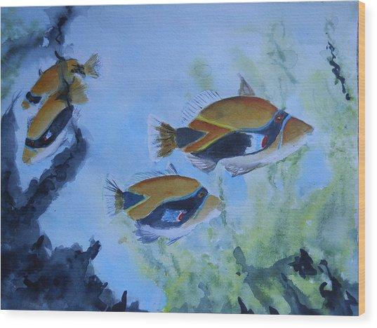 Hawaiian Trigger Fish Wood Print