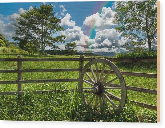 Wood Print featuring the photograph Hawaiian Wagon Wheel by Harry Spitz