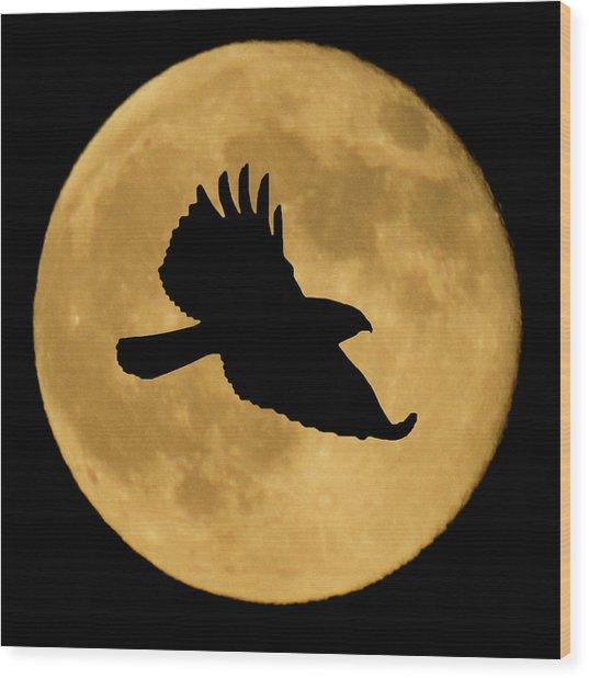 Hawk Flying By Full Moon Wood Print
