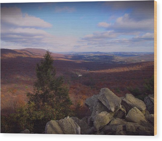 Hawk Mountain Sanctuary Wood Print