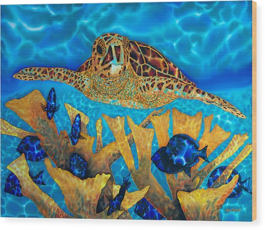 Hawksbill Sea  Turtle Wood Print