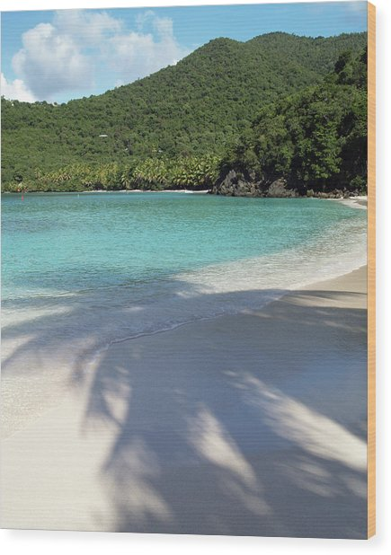 Hawksnest Bay And Gibney Beach Wood Print
