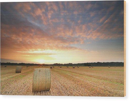 Hay Bale Field At Sunrise Photograph By Stu Meech