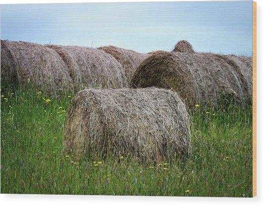 Hay Bales Among The Wildflowrs Wood Print