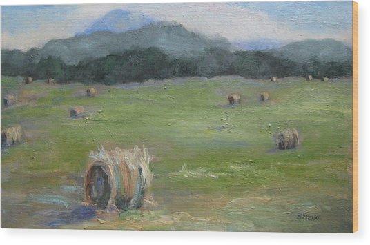 Hay Bales And Pinnacle Wood Print