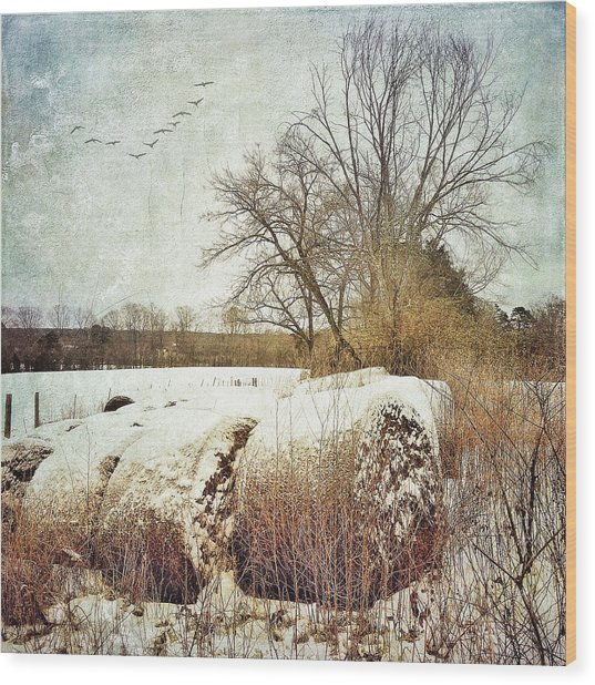 Hay Bales In Snow Wood Print