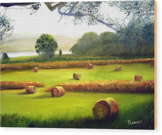 Hay Bales Wood Print by Julie Lamons