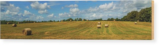 Wood Print featuring the photograph Hay Bales Panoramic by Barry Jones