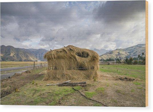 Hay Hut In Andes Wood Print