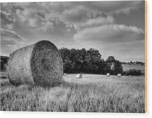 Hay Race Track Wood Print