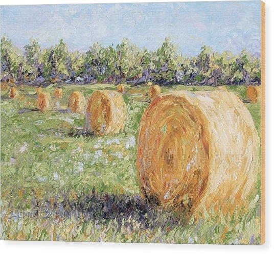 Hay Rolls Wood Print