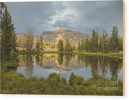 Hayden Peak Wood Print