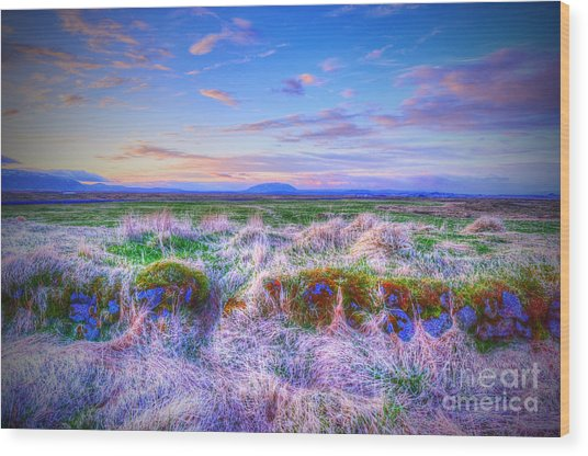 Hayfield Near Selfoss Iceland Wood Print
