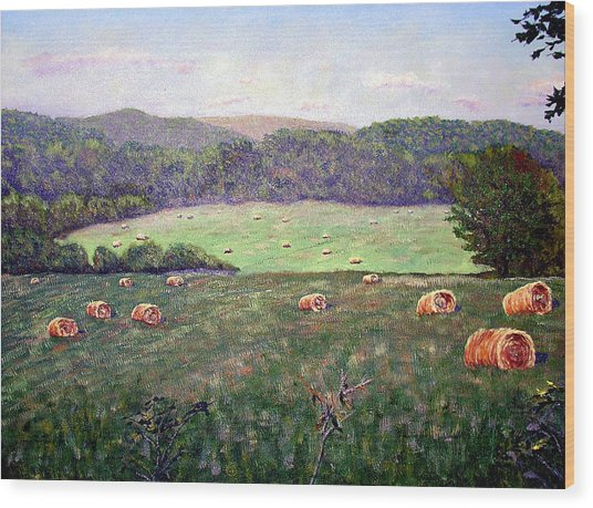 Hayfield  Wood Print by Stan Hamilton