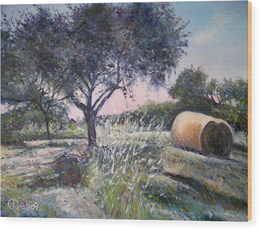 Haystack In Orchid Riano Italy 2009 Wood Print by Enver Larney