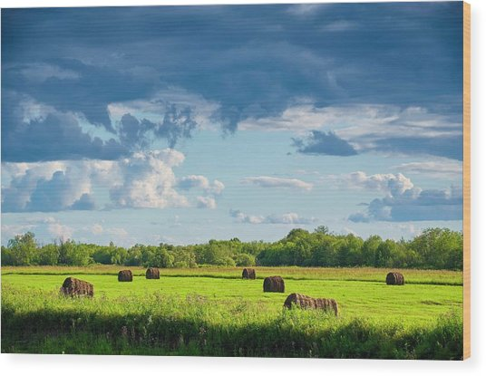 Haystacks In A Meadow Wood Print by Evgeny Buzov
