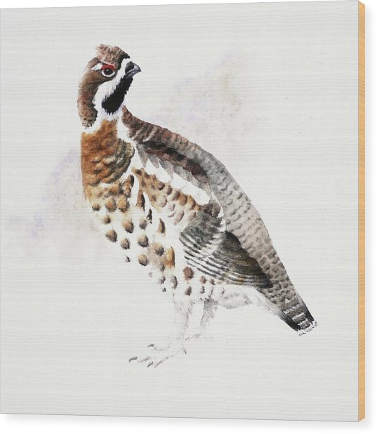 Hazel Grouse Wood Print