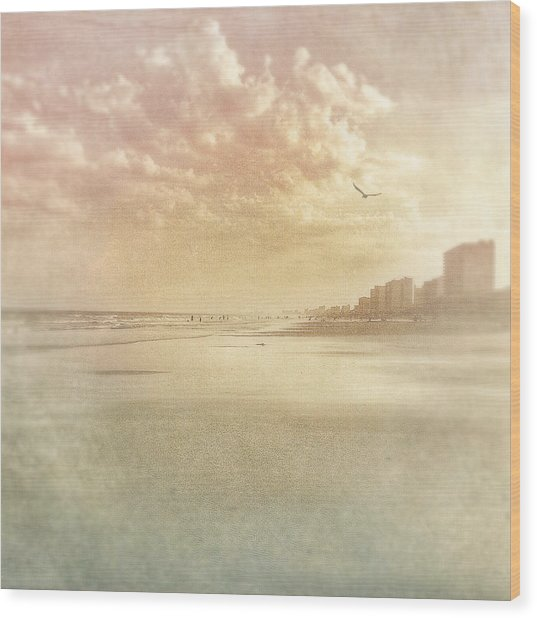 Hazy Day At The Beach Wood Print