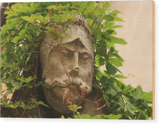 Head With Vines Wood Print by Michael Henderson