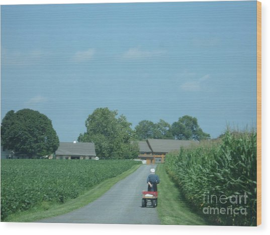 Heading Home From The Market Wood Print
