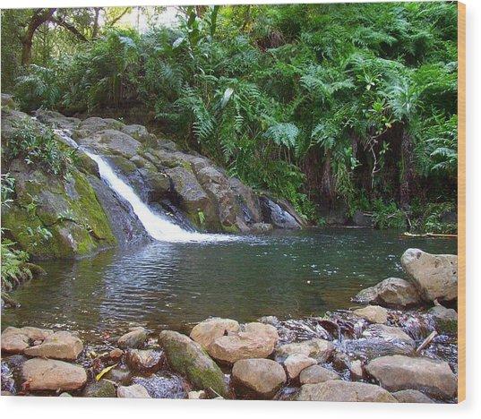 Healing Pool - Maui Hawaii Wood Print