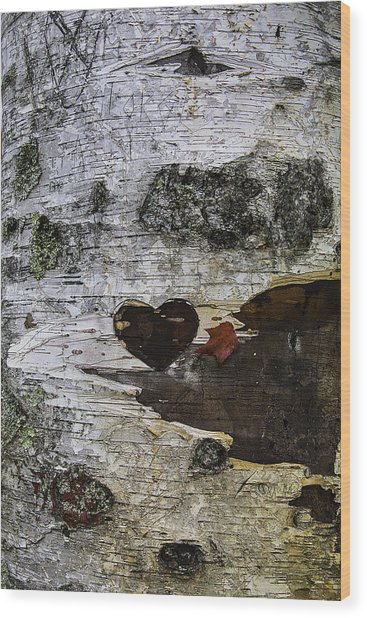 Heart Carved In Tree Wood Print