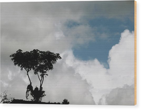 Heart In The Clouds Wood Print