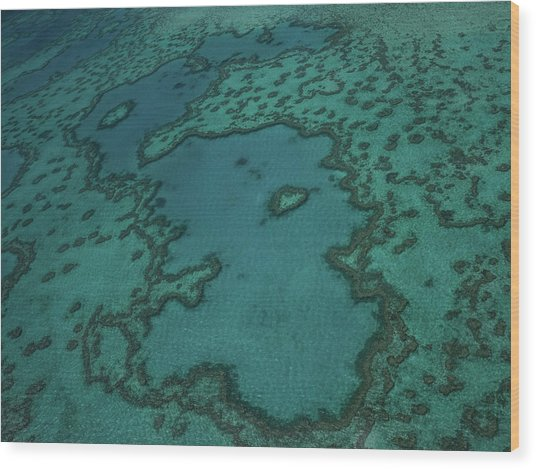 Heart Reef Wood Print