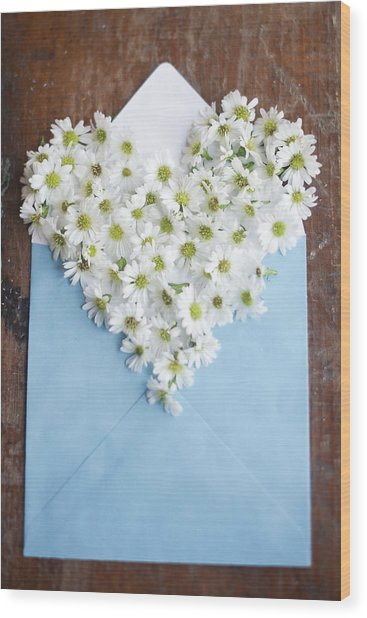 Heart Shaped Daisies In Blue Envelope Wood Print
