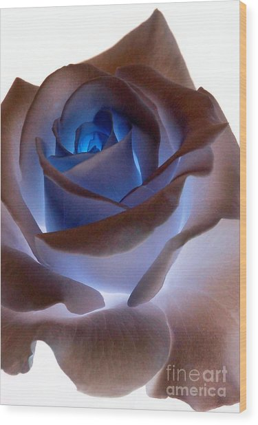 Heartglow Rose Wood Print