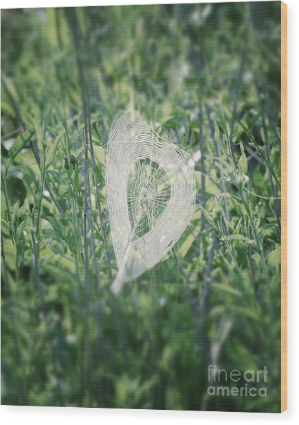 Hearts In Nature - Heart Shaped Web Wood Print