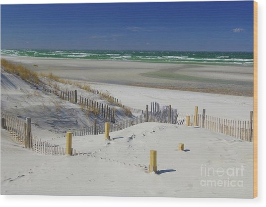 Heaven At Mayflower Beach Wood Print