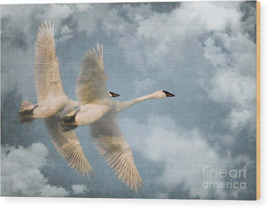 Heavenly Flight Wood Print
