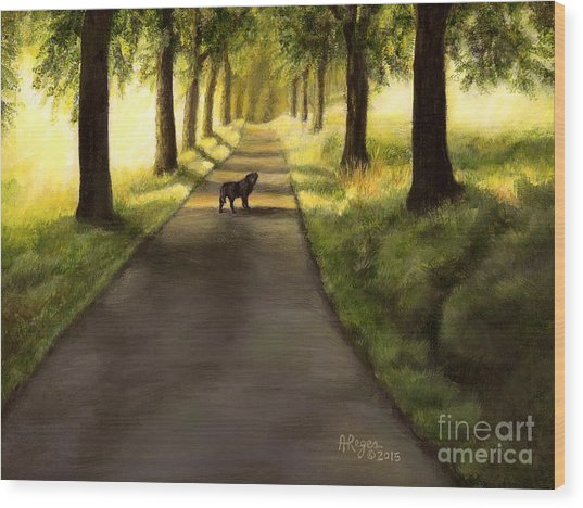 Serenity - Walk With Black Labrador Wood Print