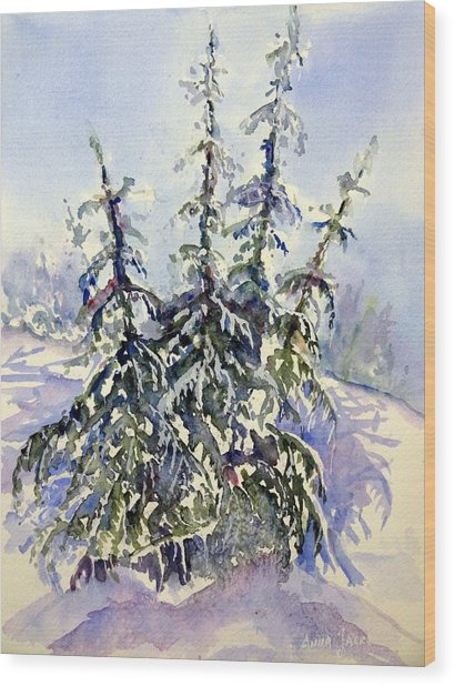 Heavy Snow In The Cascades Wood Print