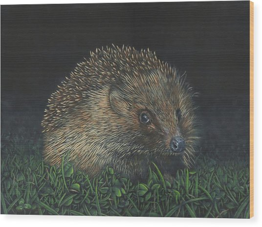 Hedgehog Wood Print
