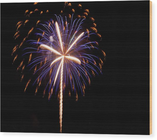 Hello 2014 Palmetto State Wood Print